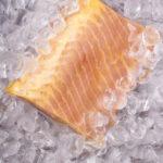 Freshly Frozen Sturgeon Fillet